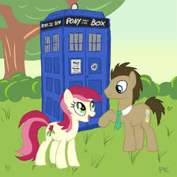 Rose and the Doctor by Pappkarton