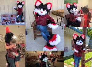 Shadow Fursuit finished