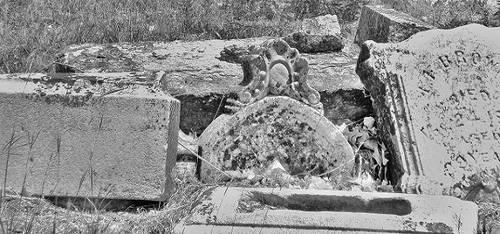 Oakwood Cemetery Est. 1872 by ArielOlivia