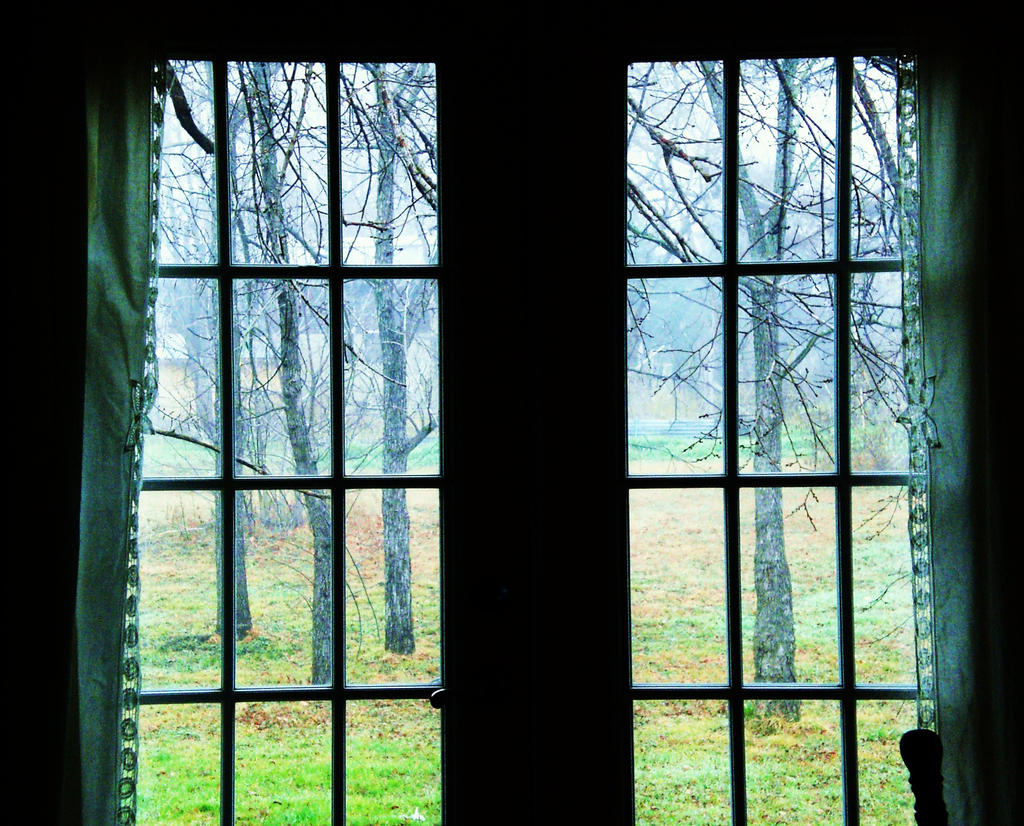 Looking out the french doors by arielolivia on deviantart for Looking for french doors