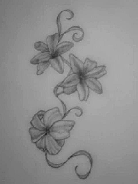 hyacinth design by francescamiller on deviantart. Black Bedroom Furniture Sets. Home Design Ideas