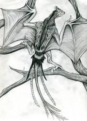 Sketchbook Request: Yi Qi Wyvern by EvilSaintGood