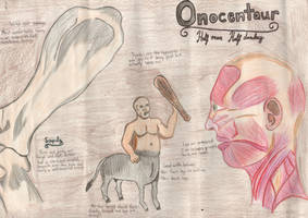 Onocentaur