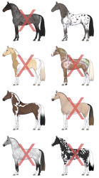 Equine Adoptable Set [1/8 OPEN] + REDUCED PRICE
