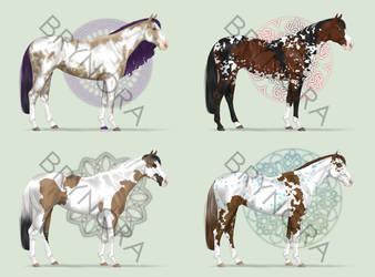 Equine Adoptables [1/4 OPEN]