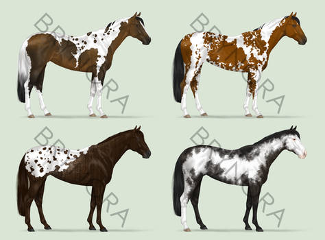 Equine Adoptables [3/4 OPEN]