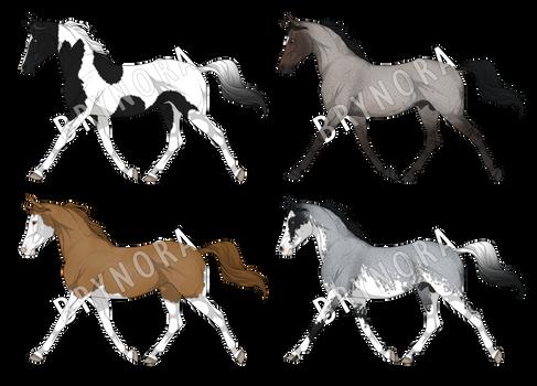 Equine Adoptables [CLOSED]
