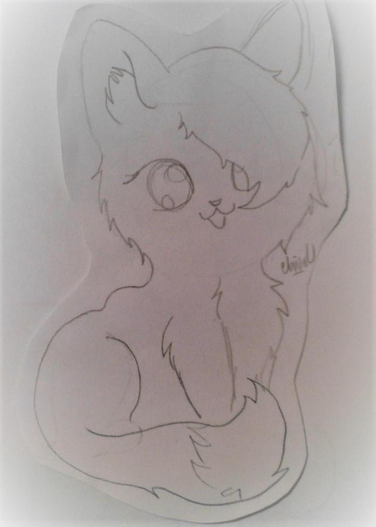 Frost Kitty Sketch by AbiCat3043