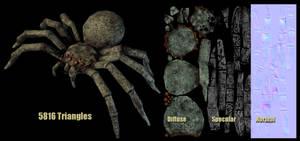 Spider Breakdown