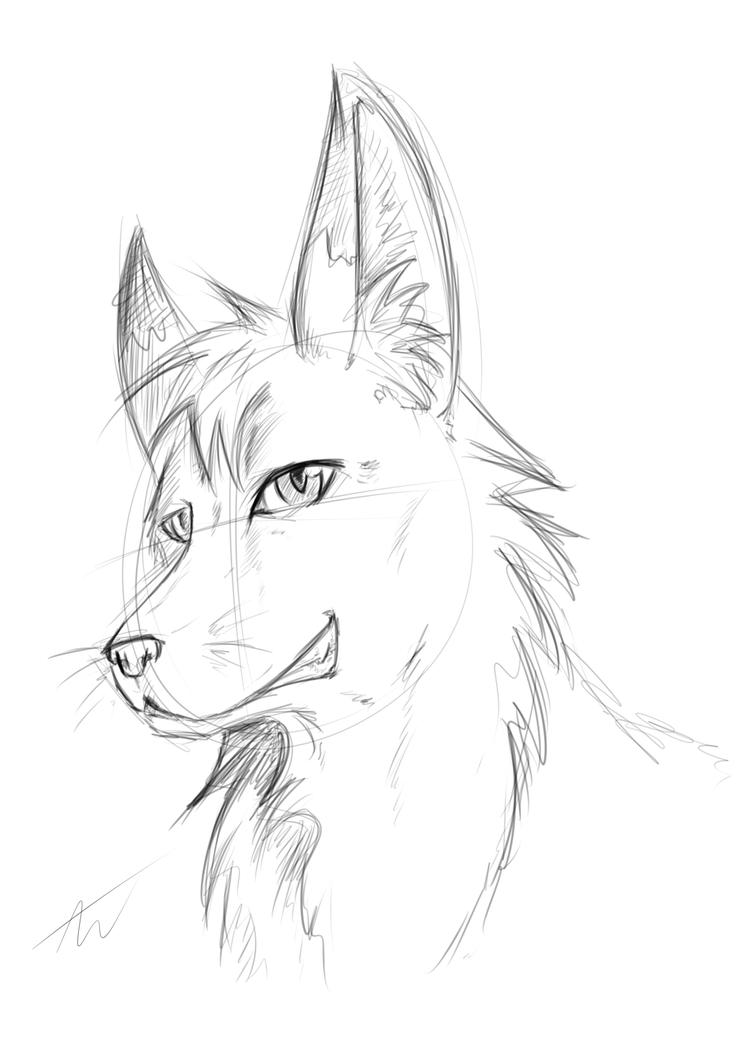 Look i can draw a wolf now p by w raine on deviantart look i can draw a wolf now p by w raine ccuart Gallery