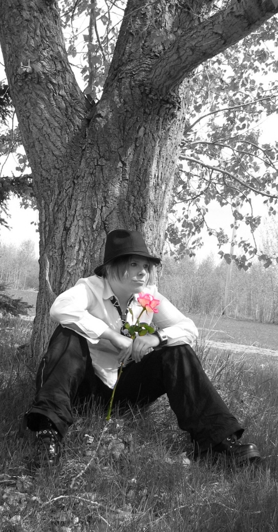 Pink Rose by chamzi