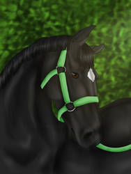 The Fox in Green - FIRST PLACE by E-RedTrinity