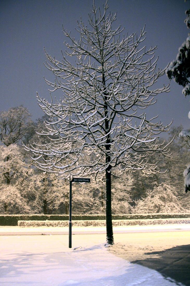 Snowfall by JuliZib