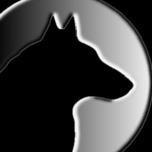 feral-photos's Profile Picture