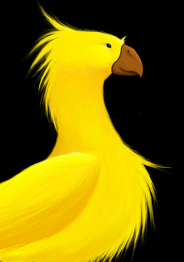 how to get a chocobo