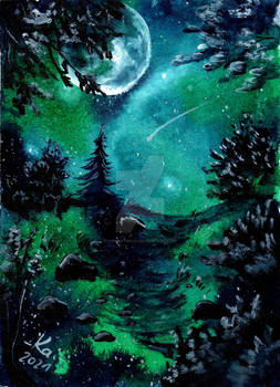 Kakao511 - Forest