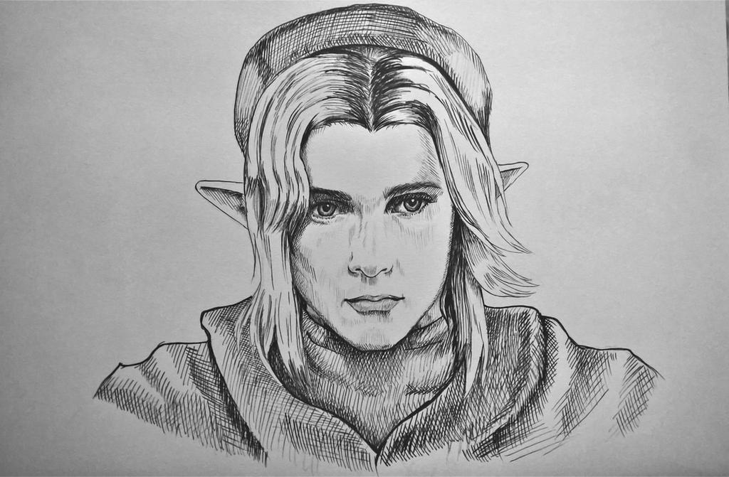 Adult Link by Goldahe