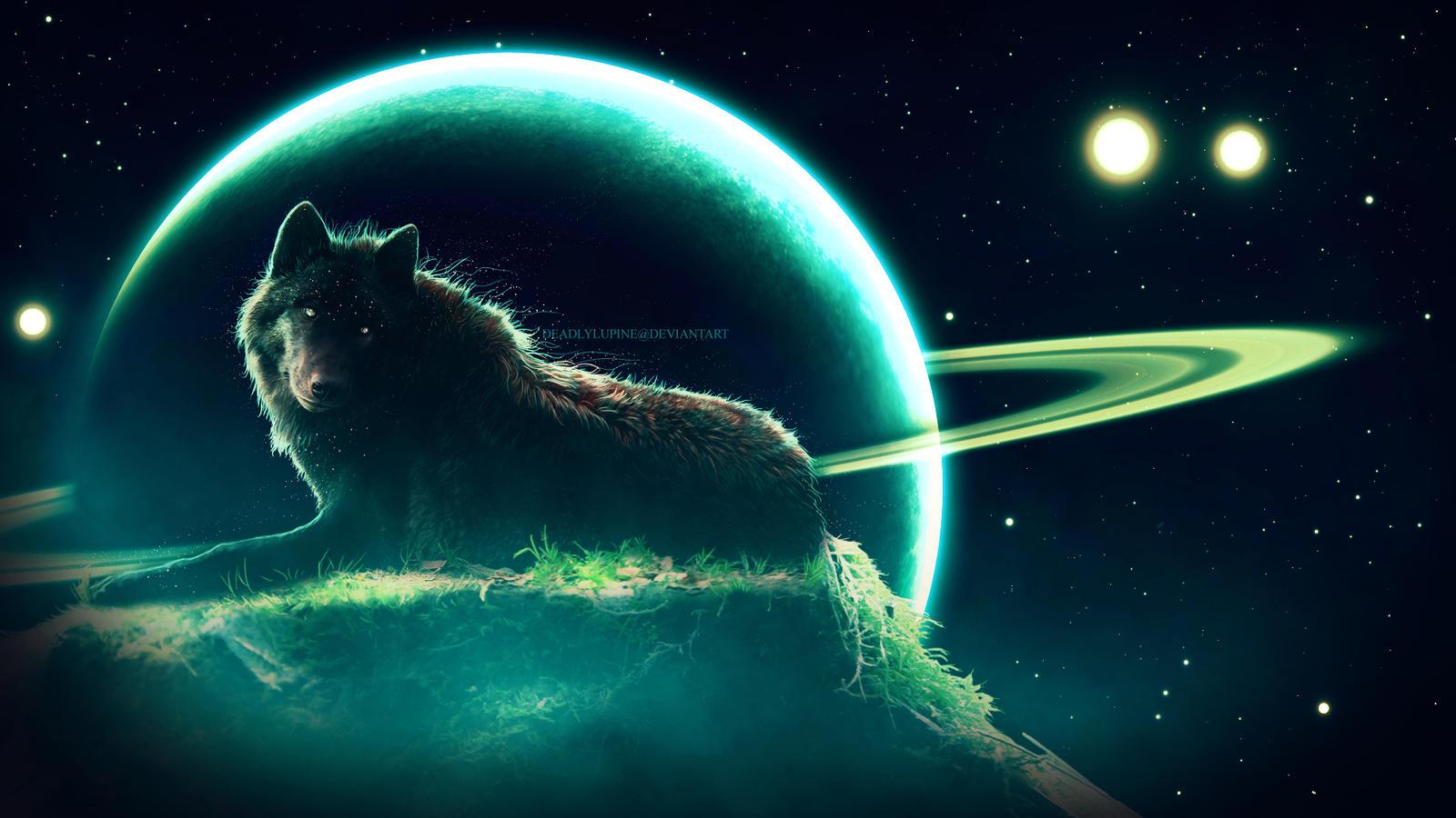 Starfall - In SPACE!