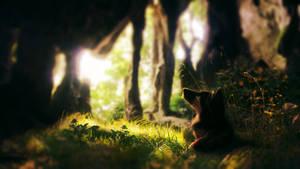 Archana- Cave Light