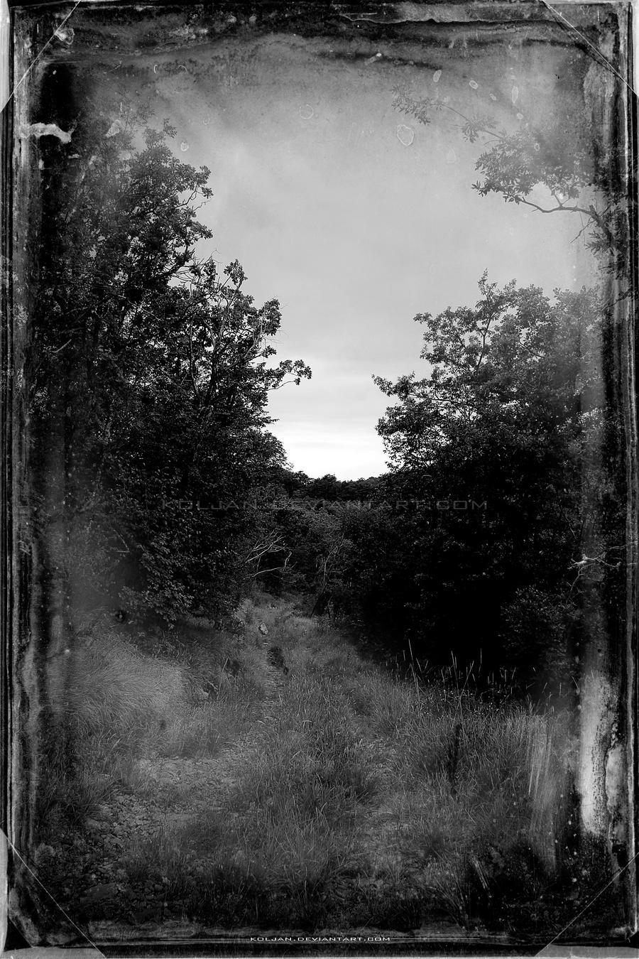Dusk at the horizon by Koljan