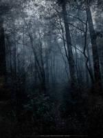 By the morbid dream part 2 by Koljan