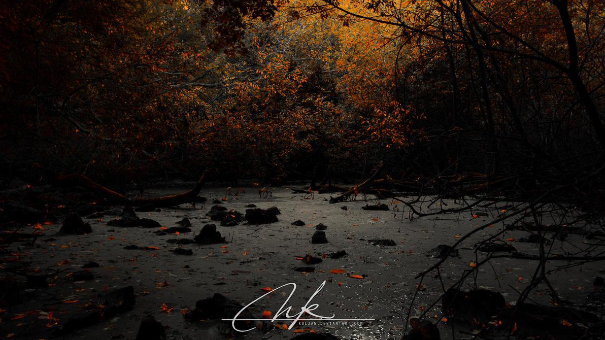 The Swamp by Koljan