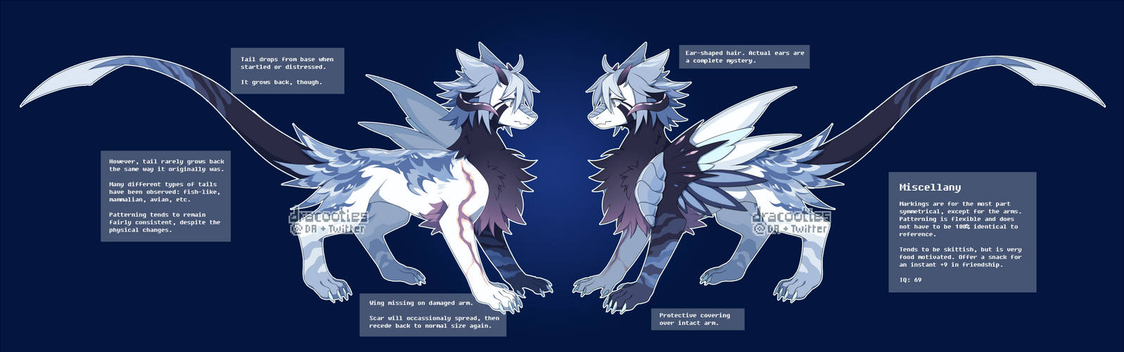[P] Sona Reference