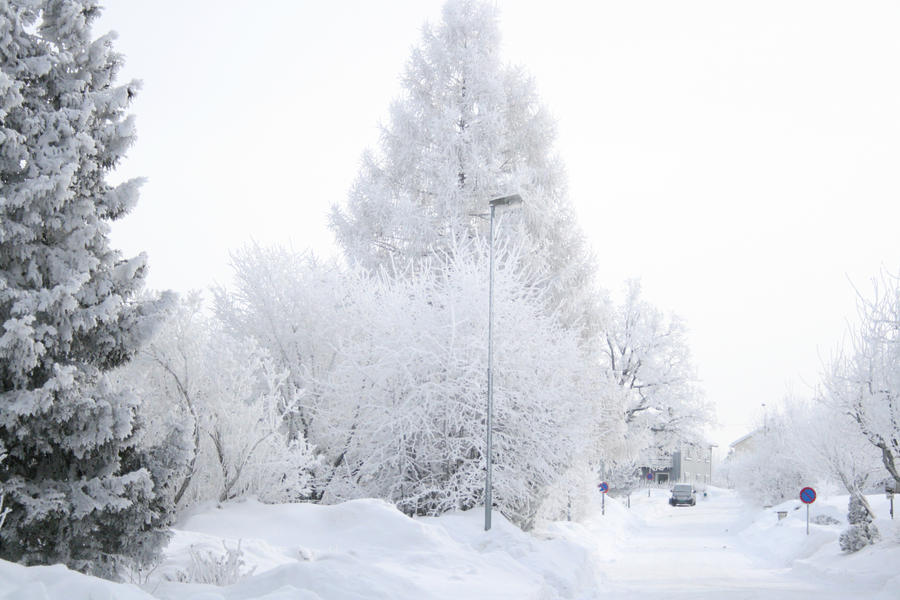 White by elen89