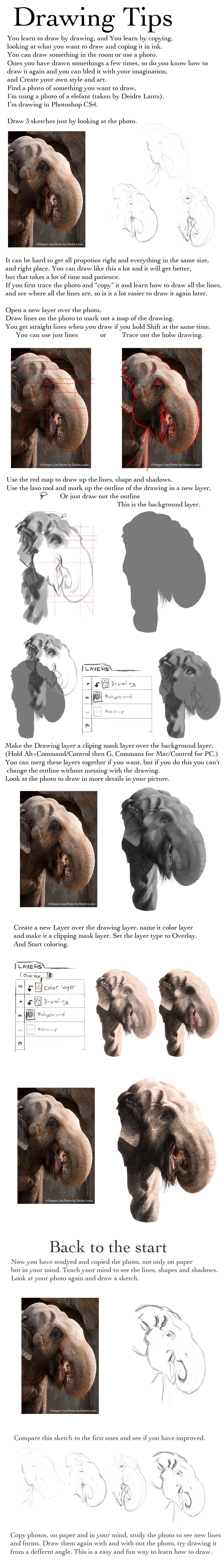 Drawing tips by elen89