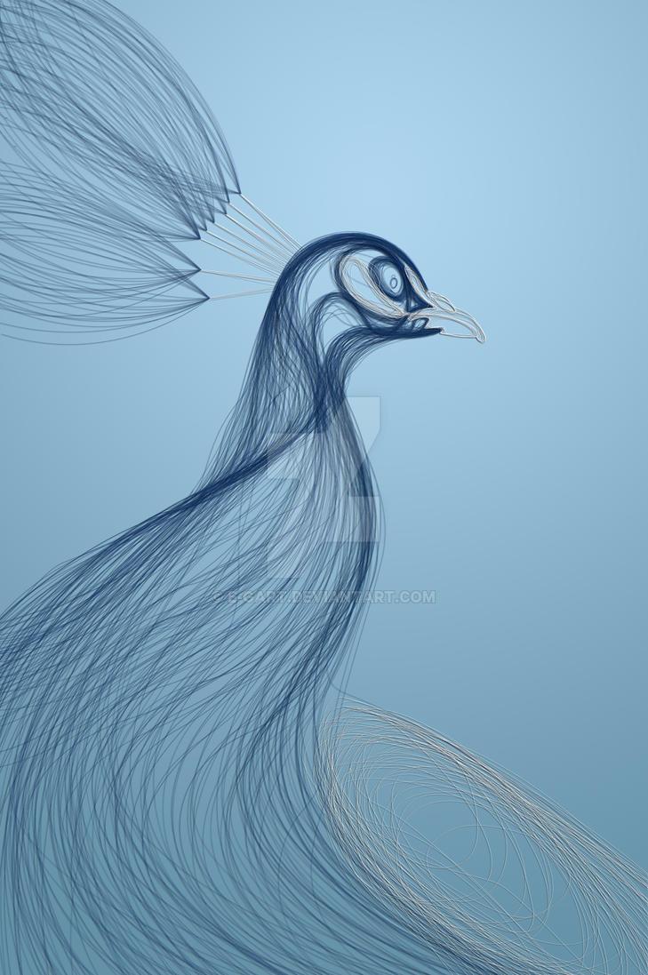 peacock by e-gart