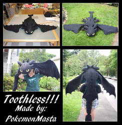 Toothless Plushie by PokemonMasta