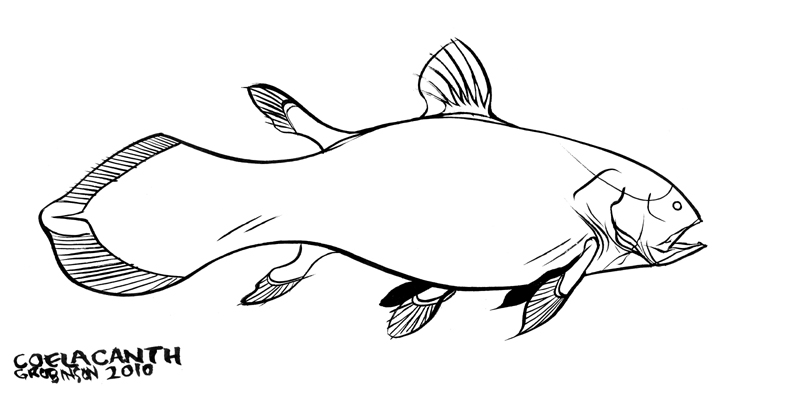 Coelacanth by Beaston