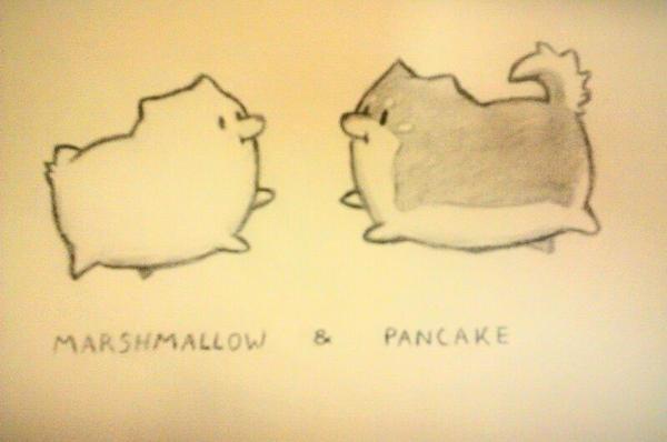 Marshmallow and Pancake by TheRiseFluffyFox