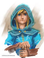 Link from The Legend of Zelda: Breath of the Wild by castcuraga