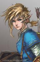 Link - Legend of Zelda: Breath of the Wild by castcuraga