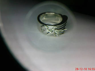 The price of the Griever ring is 53 USD by Devyatkin