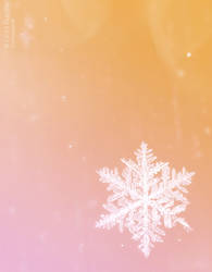 Collection: Snowflakes on coloured background by Kluschi