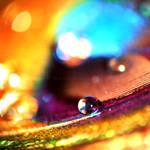 Technicolor Tidalwave
