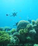 Underwater monsters