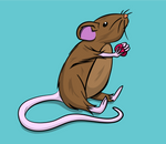 Mouse Series - Mouse Four