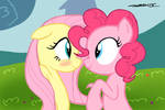 MLP - The Pink and the Shy