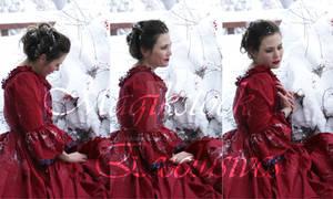 rose red portrait set