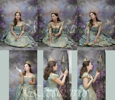princess odds n ends by magikstock