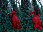 petit chaperon rouge 4