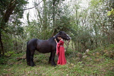 A girl and her horse 1 by magikstock