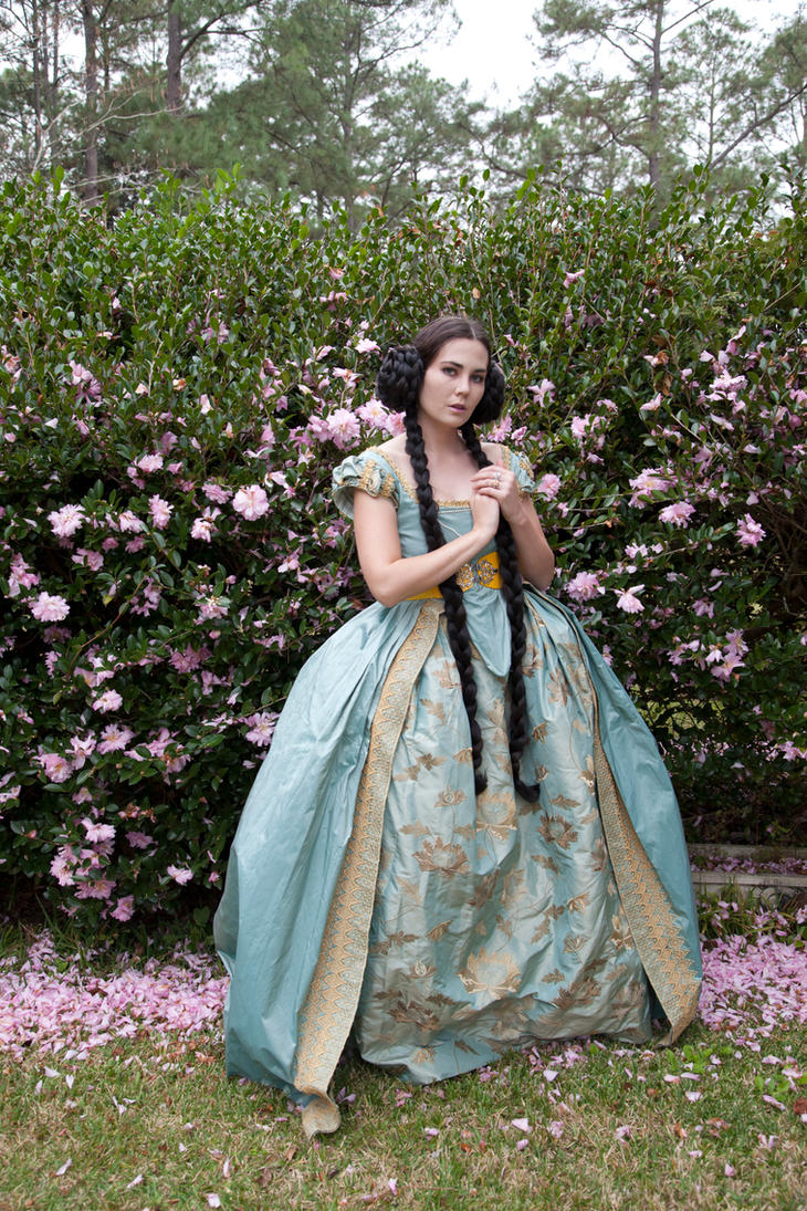 princess 8 by magikstock