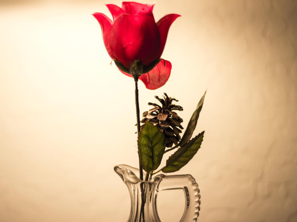 Flower by ILovehimeQt