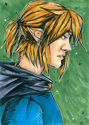 Link Portrait by JuliaBusko