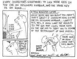 Spare Key by cartoonistforchrist