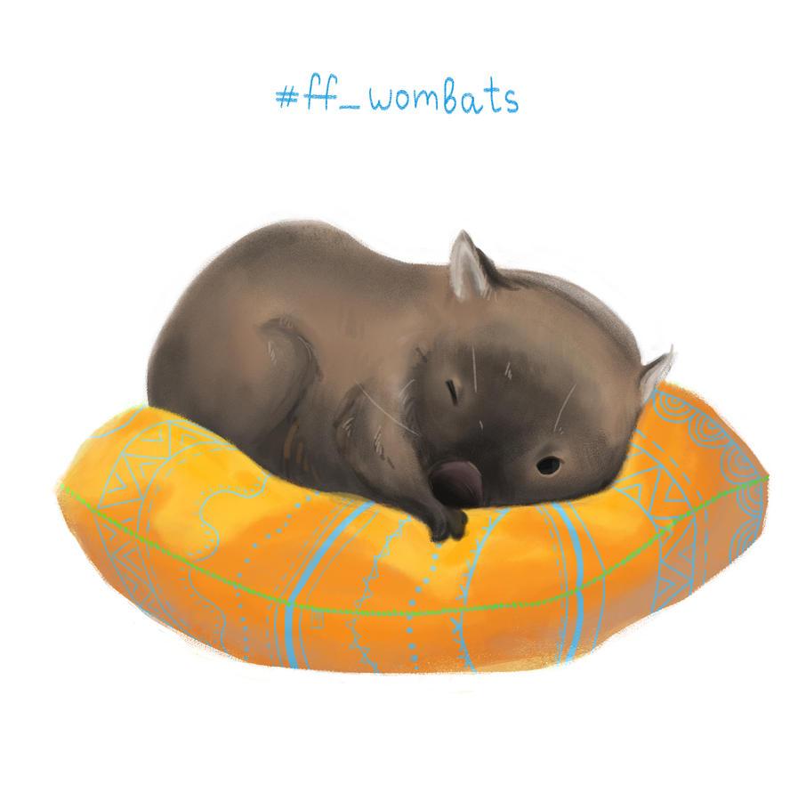 Wombat by EmilyAeren
